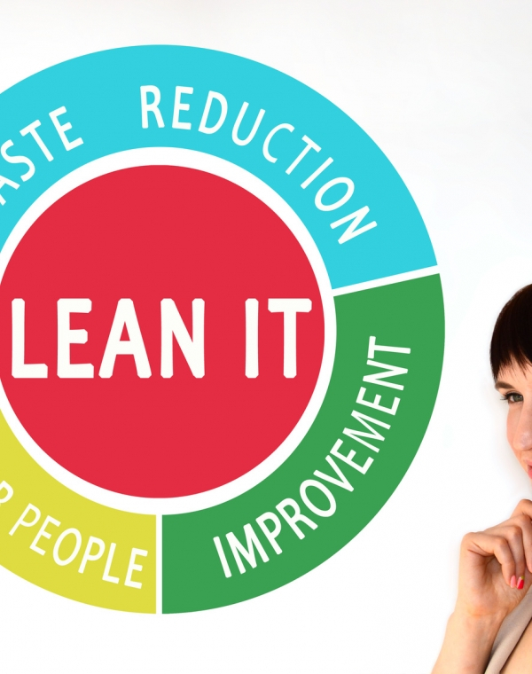 Lean organisations: the path to continuous efficiency improvement