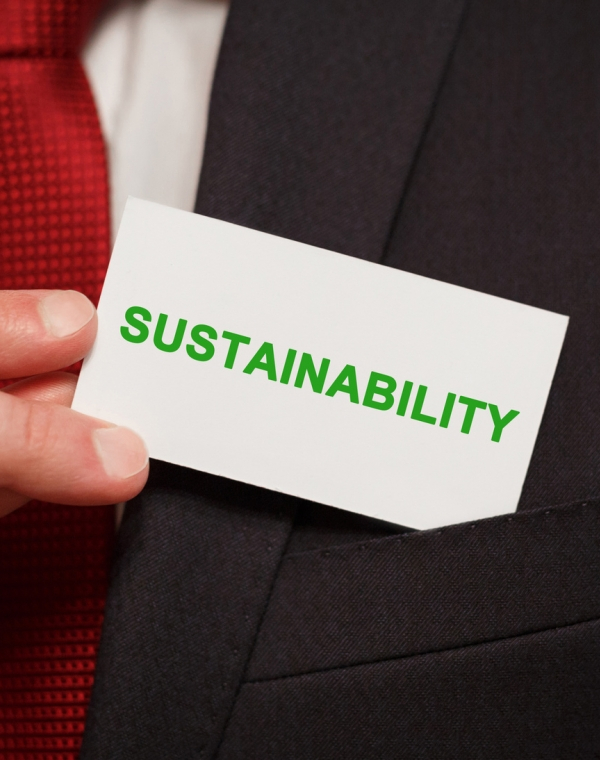 Consider the need for a sustainability officer
