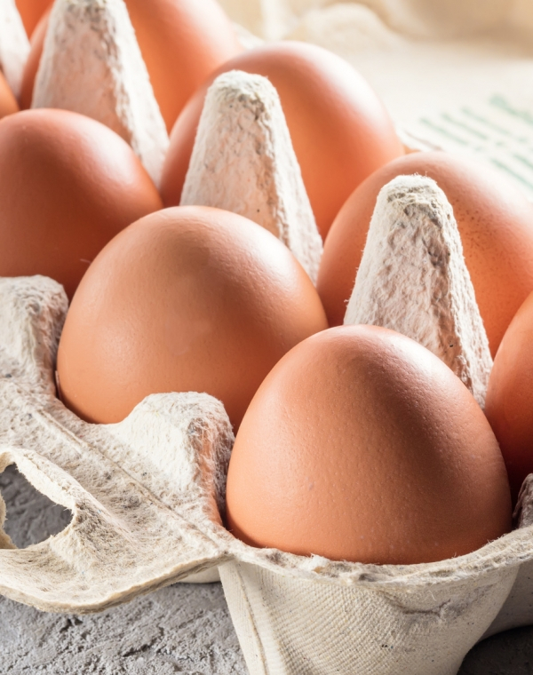 SOUL, sustainable packaging for eggs
